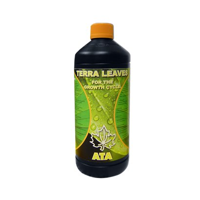 SUBCULTURE 25G GHE
