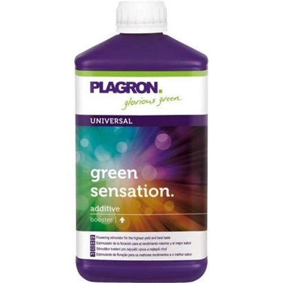 LEMON KICK 1L PLAGRON