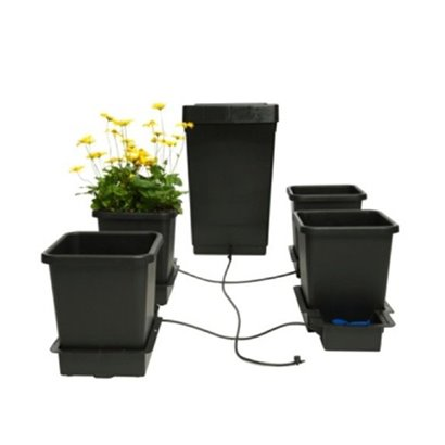 ADVANCED NUTRIENTS CONNOISSEUR GROW A+B PH PERFECT 2X1L
